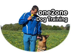 one2one dog training